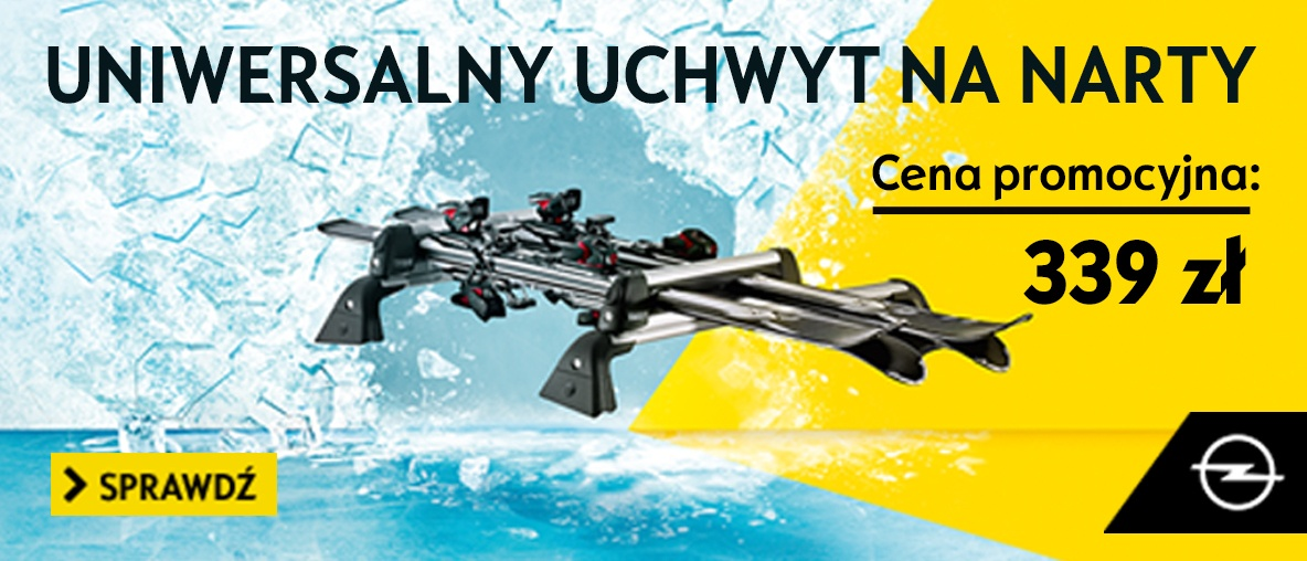 Uchwyt na narty/snowboard Thule Deluxe 726