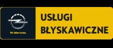 Usługi Błyskawiczne Opel
